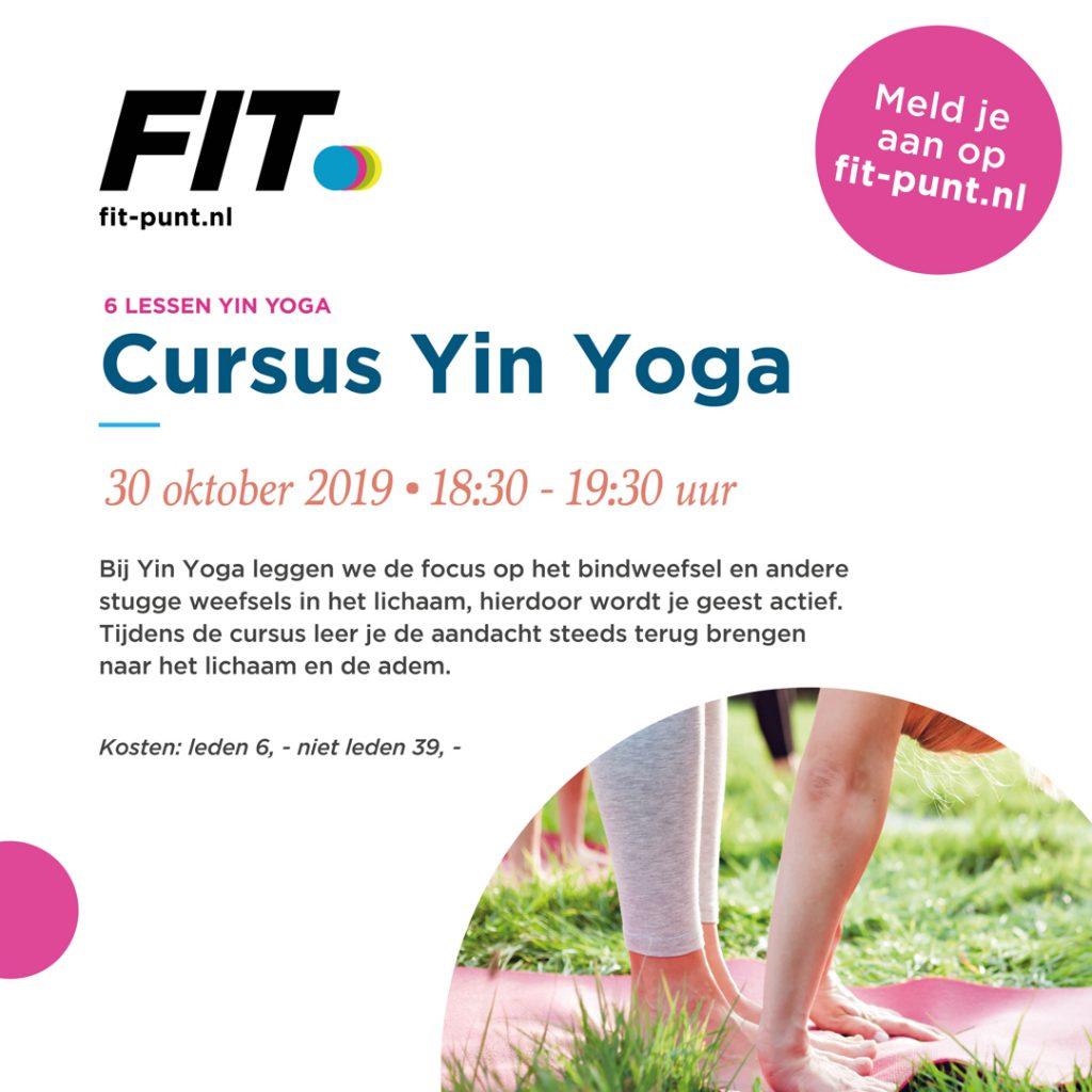 Cursus Yin Yoga - Fitpunt Hengelo